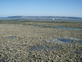 Birch Bay